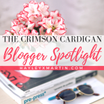 THE CRIMSON CARDIGAN- BLOGGER SPOTLIGHT - HAYLEYXMARTIN
