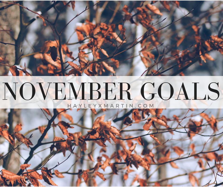 NOVEMBER GOALS - HAYLEYXMARTIN