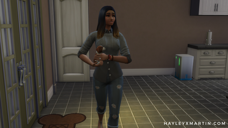 SIMS 4 CATS & DOGS - HAYLEYXMARTIN