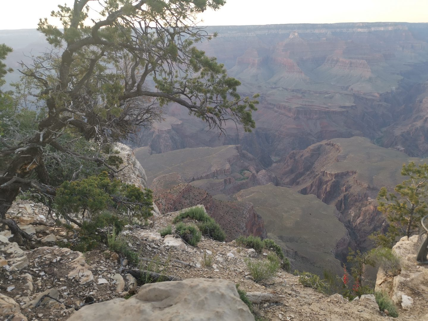 TREK AMERICA DAY 16: GRAND CANYON | BRIGHT ANGEL TRAIL | PLATEAU POINT