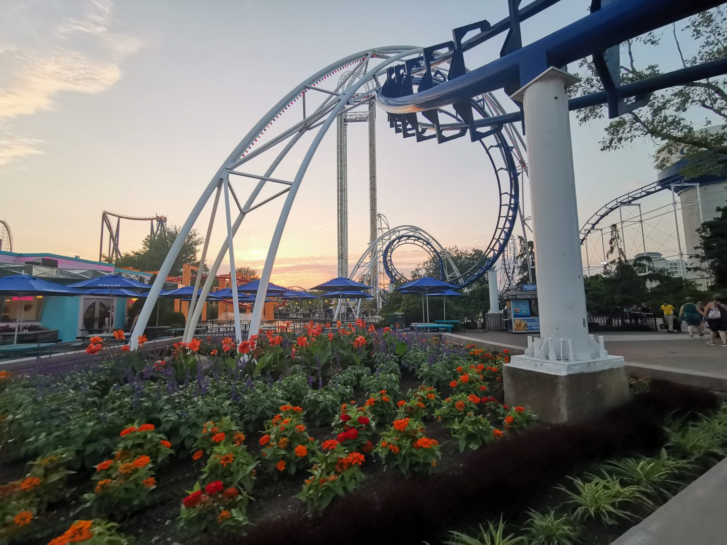 TREK AMERICA | GRAND TREK | DAY 40: CEDAR POINT